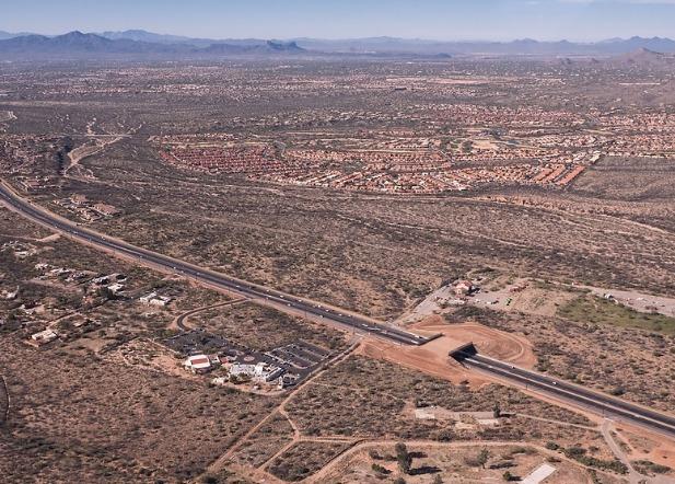пустыня сонора